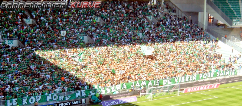 france1-1415-02 AS St. Etienne - Stade de Reims - 158